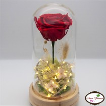 Preserved Flower Lamps