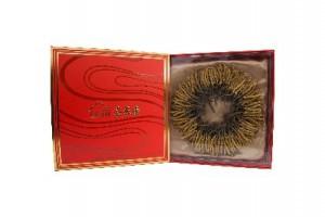 Yushu Caterpillar fungus 2 tael